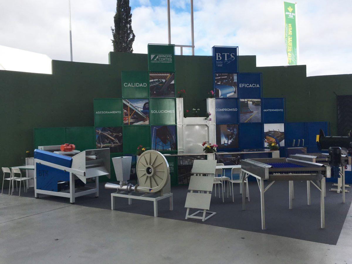 Bandas Cortes Expoliva 2017